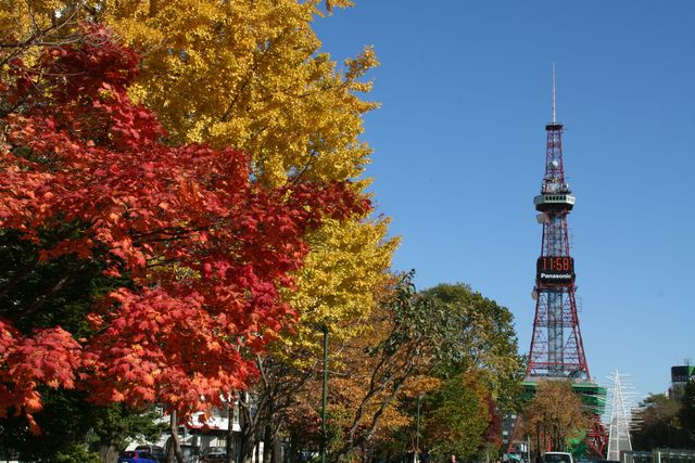 札幌市観光写真から 大通公園