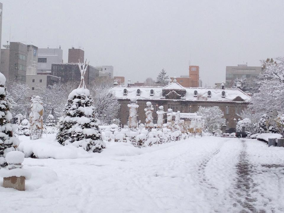 初雪の大通公園